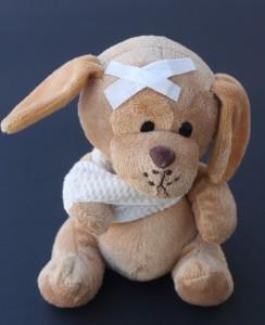 Teddyhund
