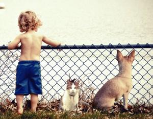 Hund_Kind4